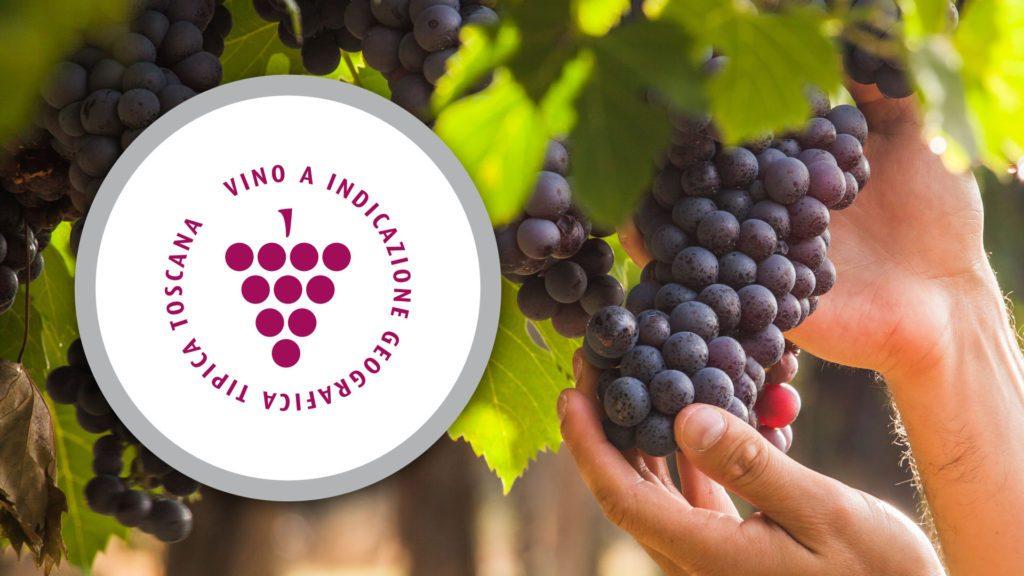 Vino IGT Toscana